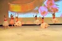 Les roses du sud-2014-321